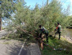 Babinsa Koramil Syiah Kuala Bersama Warga Sigap Bersihkan Pohon Tumbang Akibat Angin Kencang