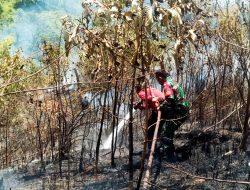Terjadi Karhutla, Babinsa TNI Lembah Seulawah Sigap Terjun Langsung Ke Lokasi